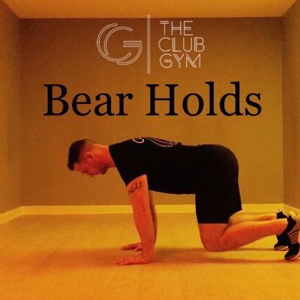 Bear Holds