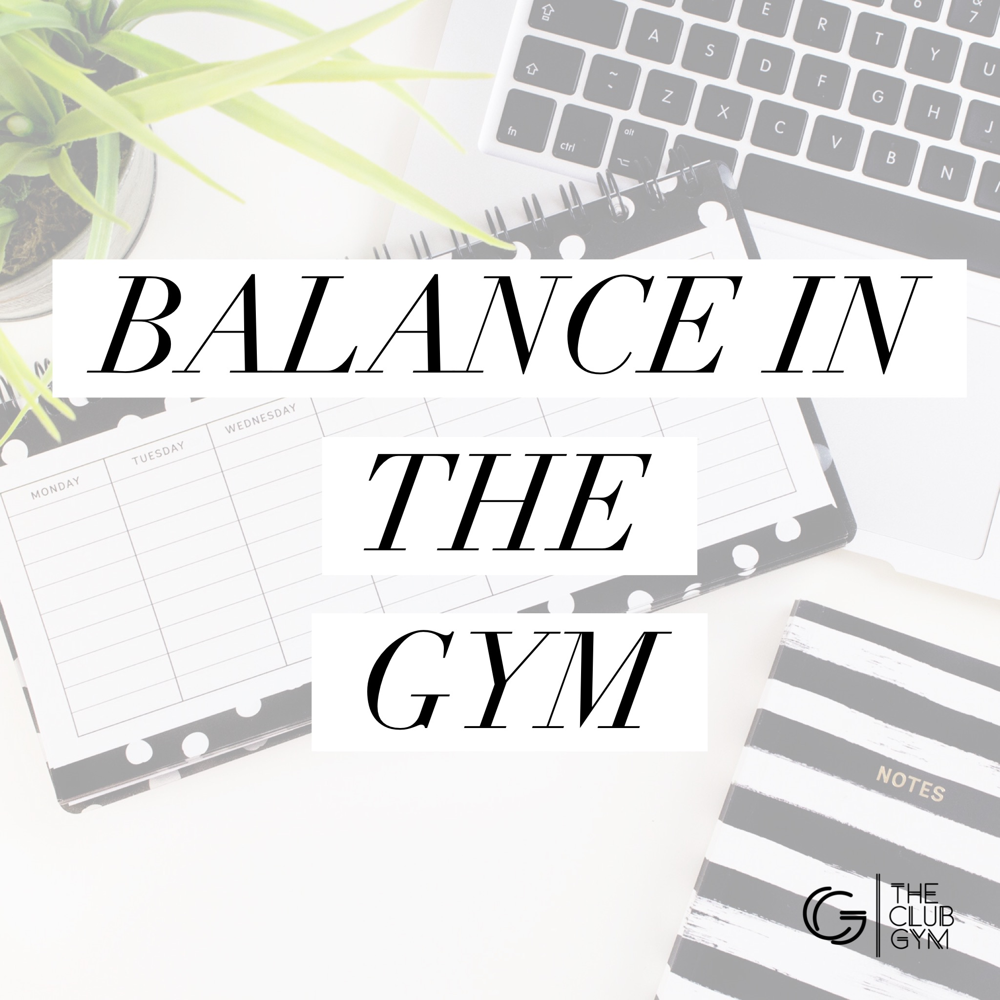 Balance in the gym