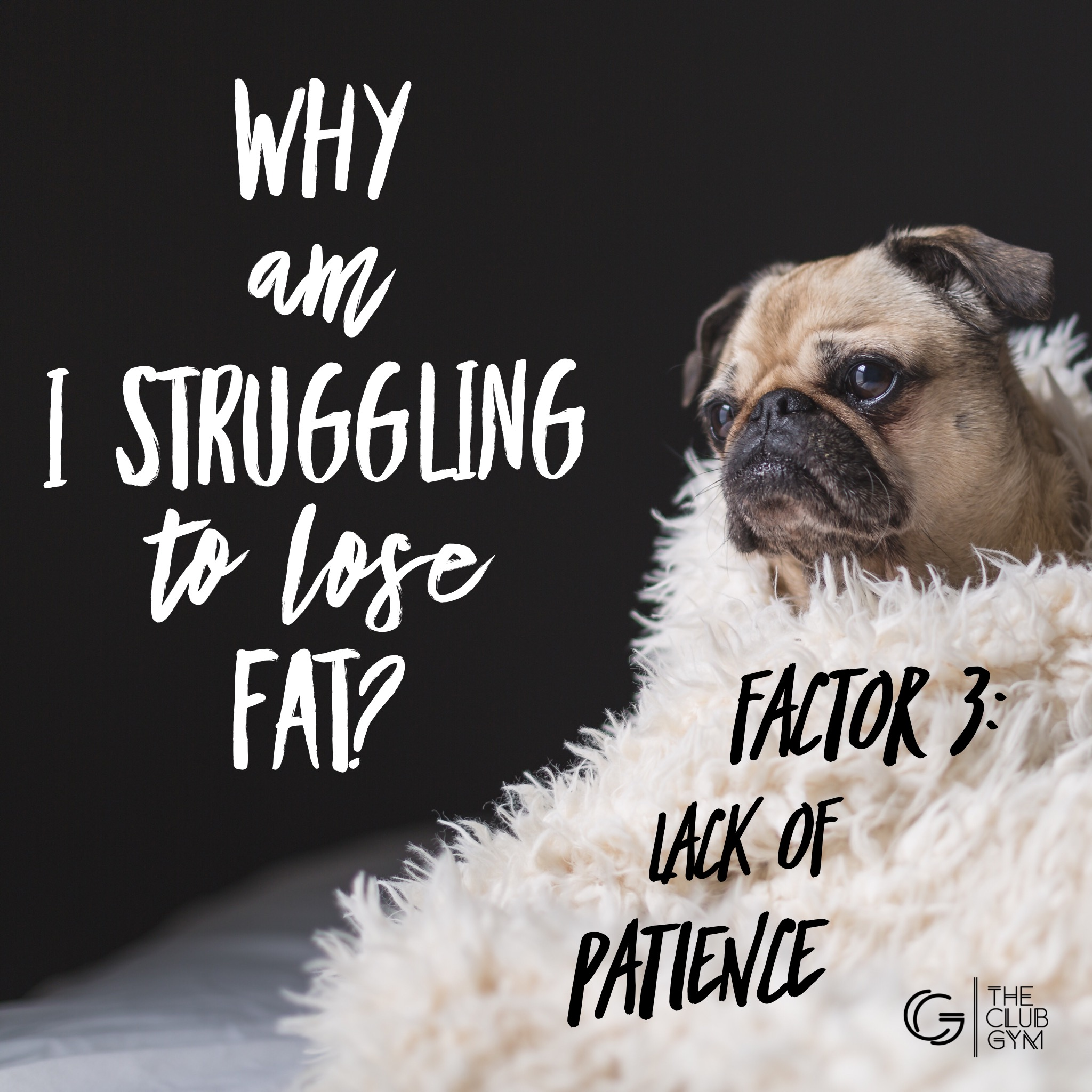 Why am I struggling to lose weight - lack of patience